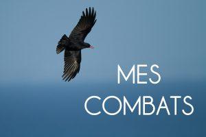 MES COMBATS