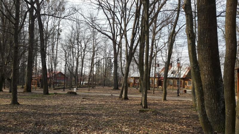 Dyrekcyjny Park, Bialowieza