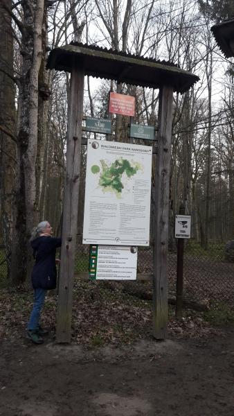 Forêt primaire de Bialowieza, visite uniquement guidée