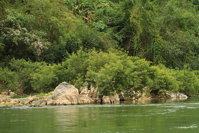 laos-2341