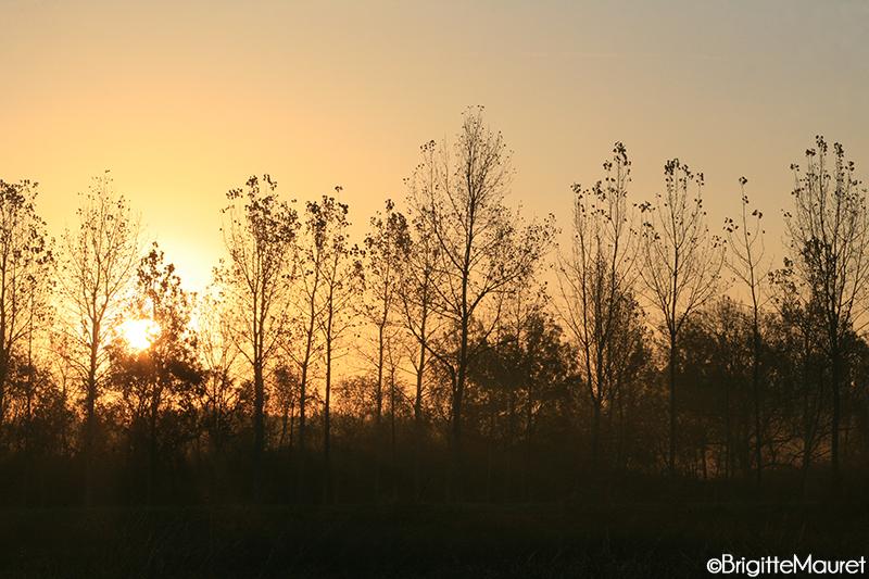 Lever de soleil  Charente Maritime