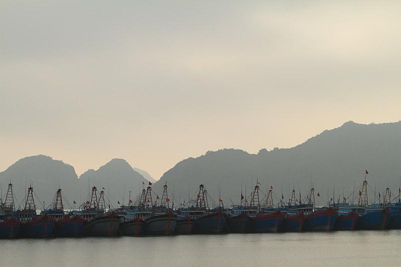 Vietnam-3113