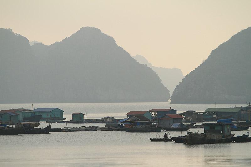Vietnam-3126