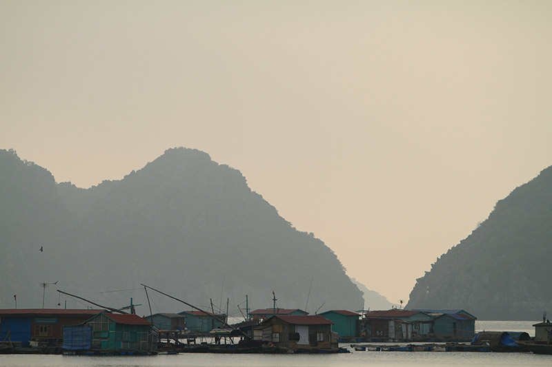 Vietnam-3140