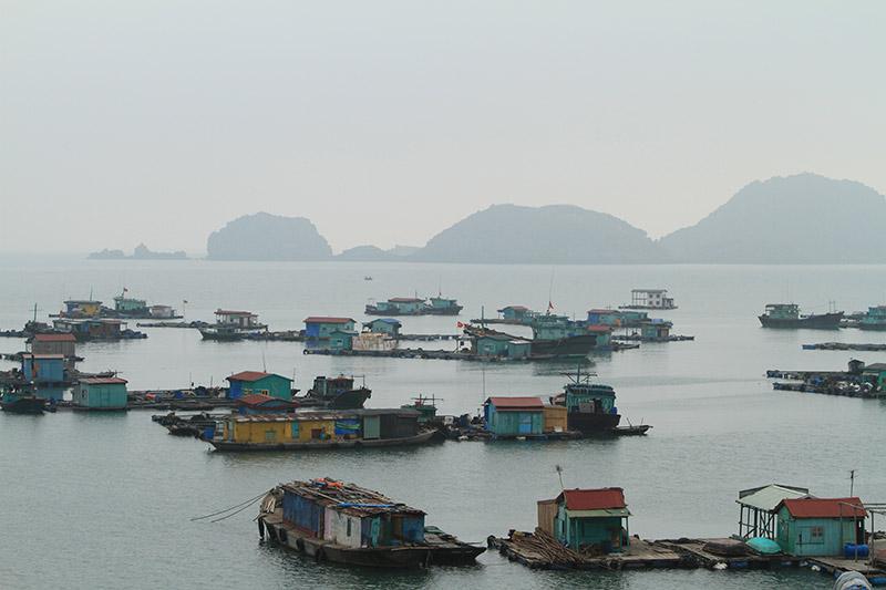 Vietnam-3192