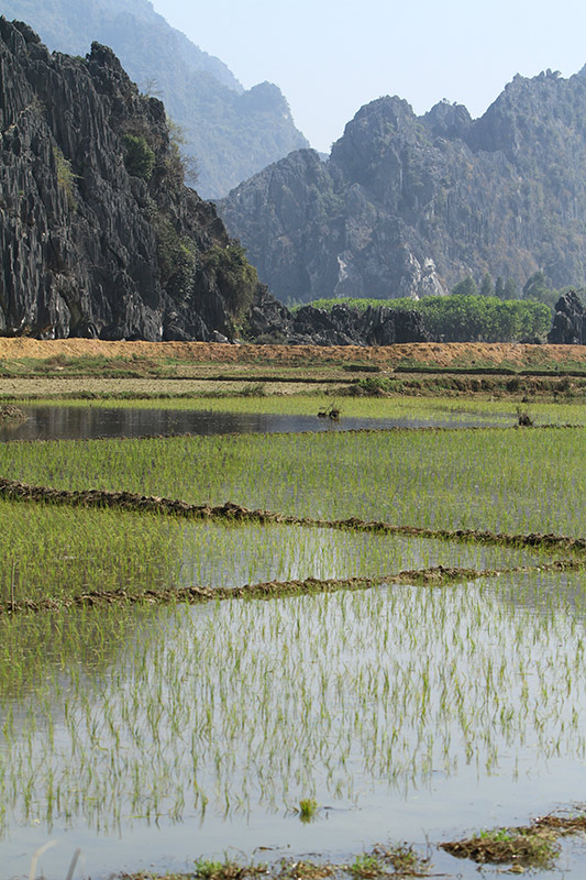 Vietnam-4565