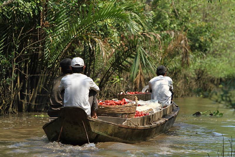 Vietnam-4950